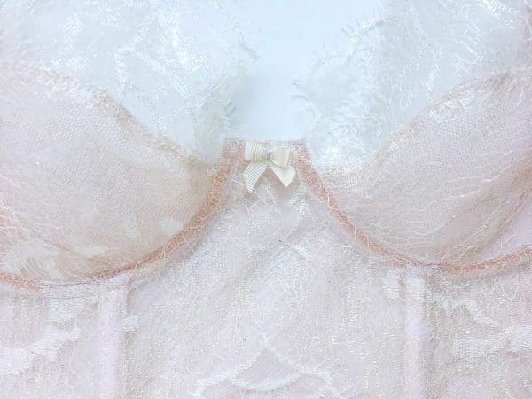 Ivory sheer bra in leavers lace details