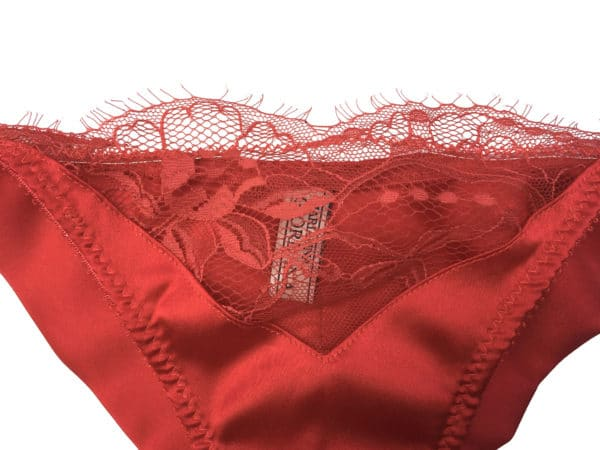red silk panties and lace see through